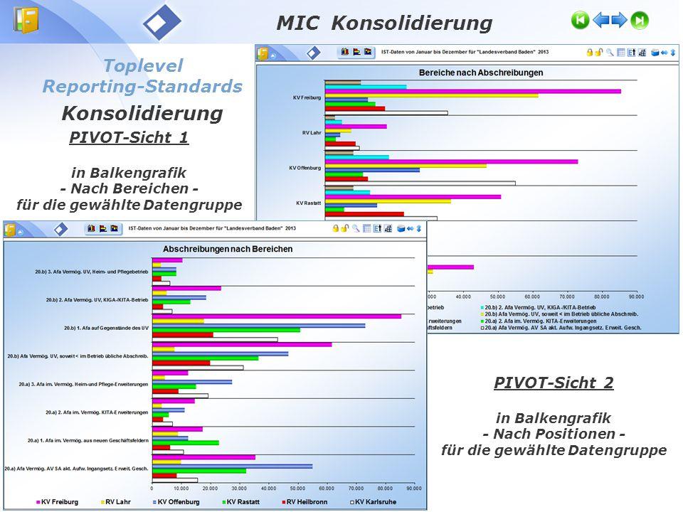 Toplevel Reporting-Standards Konsolidierung PIVOT-Sicht 1 in Balkengrafik - Nach Bereichen - für die gewählte Datengruppe PIVOT-Sicht 2 in Balkengrafik - Nach Positionen - für die gewählte Datengruppe MIC Konsolidierung