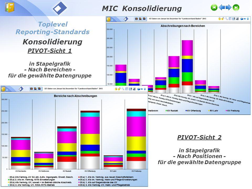 Toplevel Reporting-Standards Konsolidierung MIC Konsolidierung PIVOT-Sicht 1 in Stapelgrafik - Nach Bereichen - für die gewählte Datengruppe PIVOT-Sicht 2 in Stapelgrafik - Nach Positionen - für die gewählte Datengruppe