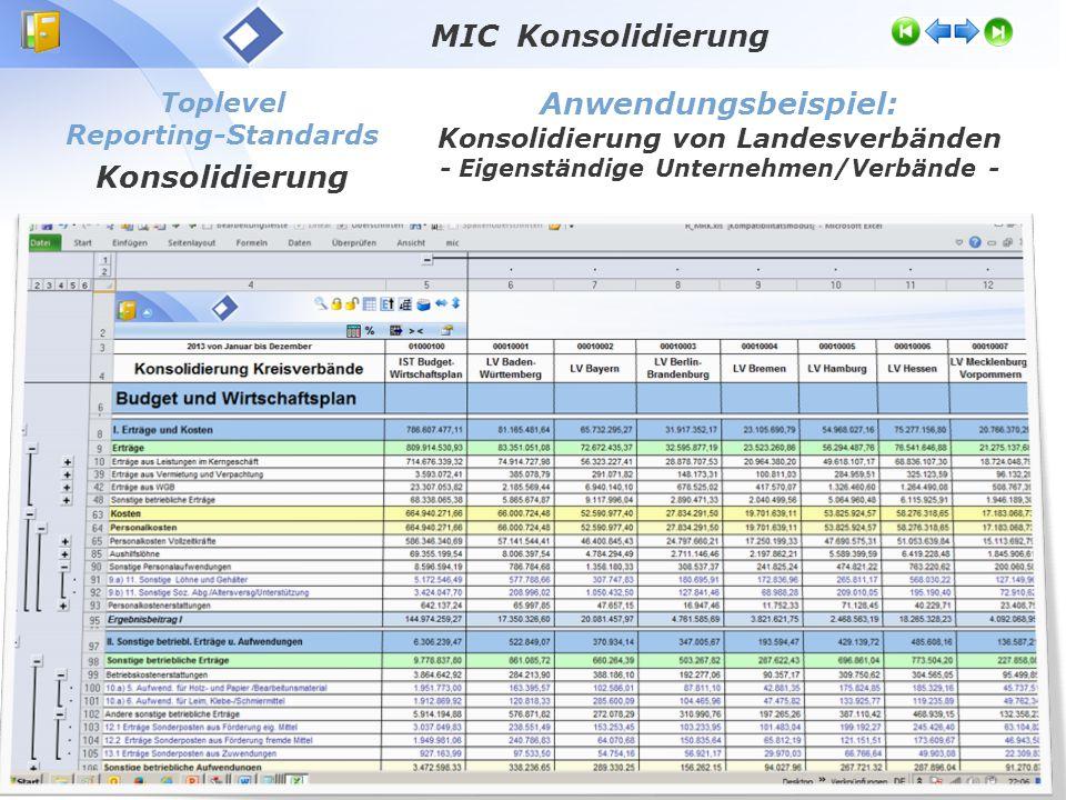 Toplevel Reporting-Standards Konsolidierung Anwendungsbeispiel: Konsolidierung von Landesverbänden - Eigenständige Unternehmen/Verbände - MIC Konsolidierung