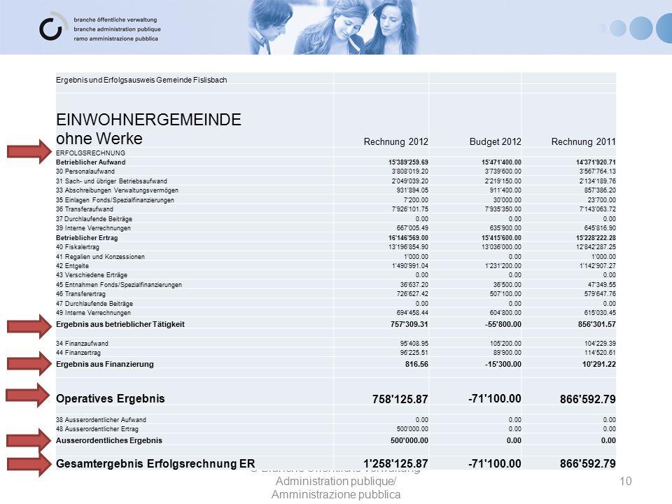10 © Branche Öffentliche Verwaltung/ Administration publique/ Amministrazione pubblica Ergebnis und Erfolgsausweis Gemeinde Fislisbach EINWOHNERGEMEIN