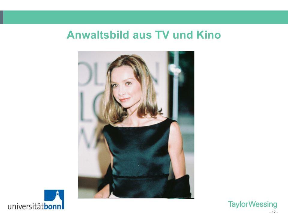 - 12 - Anwaltsbild aus TV und Kino