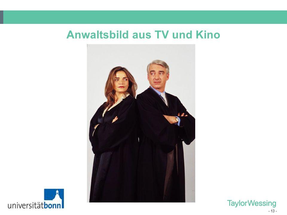 - 13 - Anwaltsbild aus TV und Kino