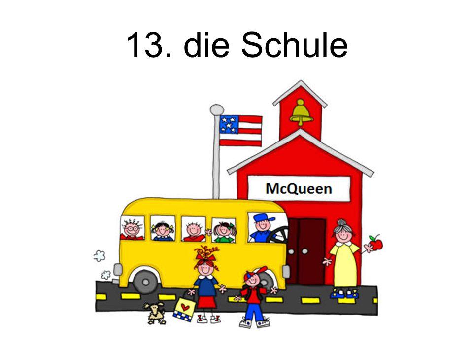 13. die Schule