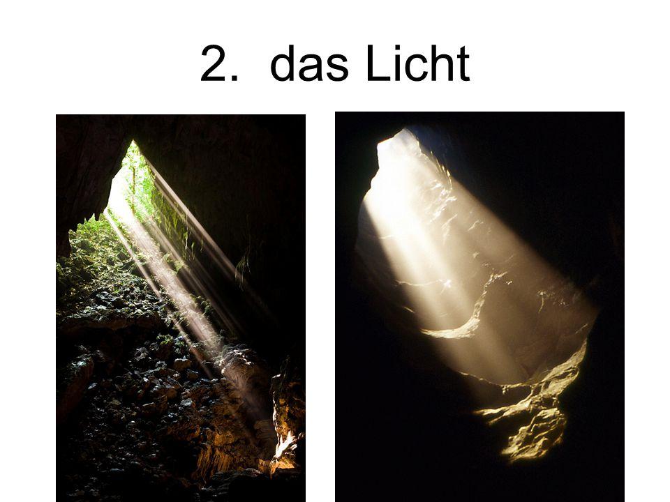 2. das Licht