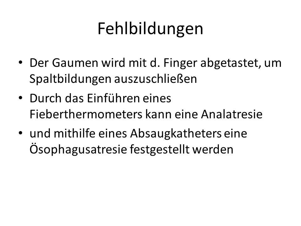 Fehlbildungen Der Gaumen wird mit d. Finger abgetastet, um Spaltbildungen auszuschließen Durch das Einführen eines Fieberthermometers kann eine Analat