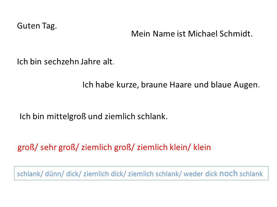 Guten Tag. Mein Name ist Michael Schmidt. Ich bin sechzehn Jahre alt. Ich habe kurze, braune Haare und blaue Augen. Ich bin mittelgroß und ziemlich sc