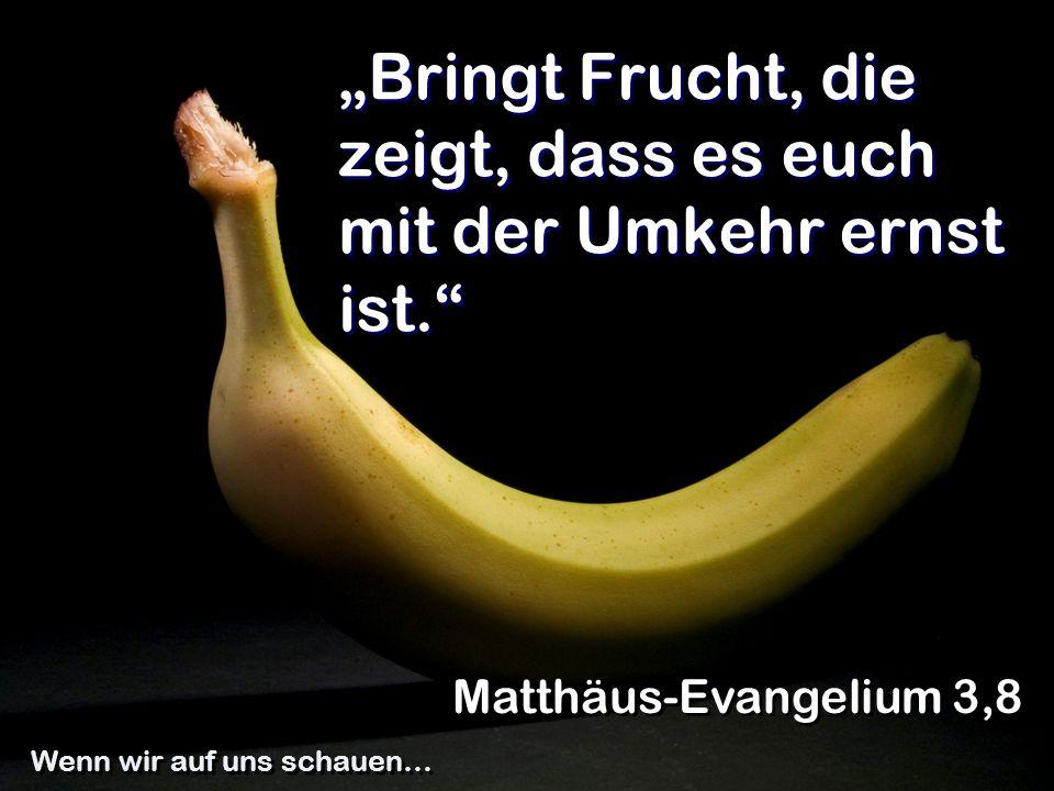 """""""Bringt Frucht, die zeigt, dass es euch mit der Umkehr ernst ist."""" Matthäus-Evangelium 3,8 Wenn wir auf uns schauen…"""