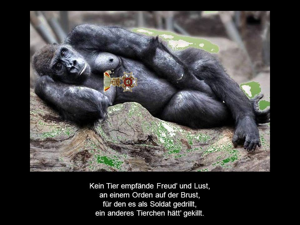 Kein Tier empfände Freud' und Lust, an einem Orden auf der Brust, für den es als Soldat gedrillt, ein anderes Tierchen hätt' gekillt.