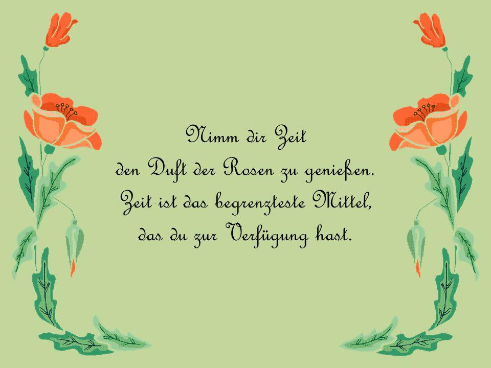 Nimm dir Zeit den Duft der Rosen zu genießen.