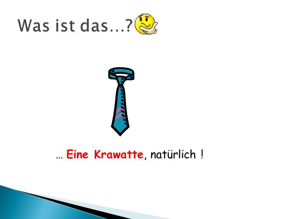 Regenschirm Film Adressenbuch Batterien TaschenlampePass Mäppchen Zahnbürste Zahnpasta Sonnencreme Hast du schon den Regenschirm eingepackt .