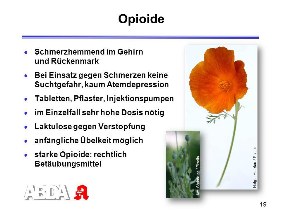 19 Opioide  Schmerzhemmend im Gehirn und Rückenmark  Bei Einsatz gegen Schmerzen keine Suchtgefahr, kaum Atemdepression  Tabletten, Pflaster, Injek