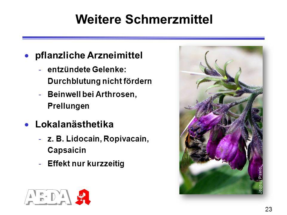 23 Weitere Schmerzmittel  pflanzliche Arzneimittel -entzündete Gelenke: Durchblutung nicht fördern -Beinwell bei Arthrosen, Prellungen  Lokalanästhe