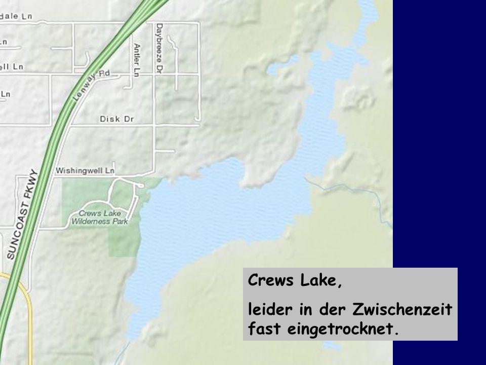 Crews Lake, leider in der Zwischenzeit fast eingetrocknet.
