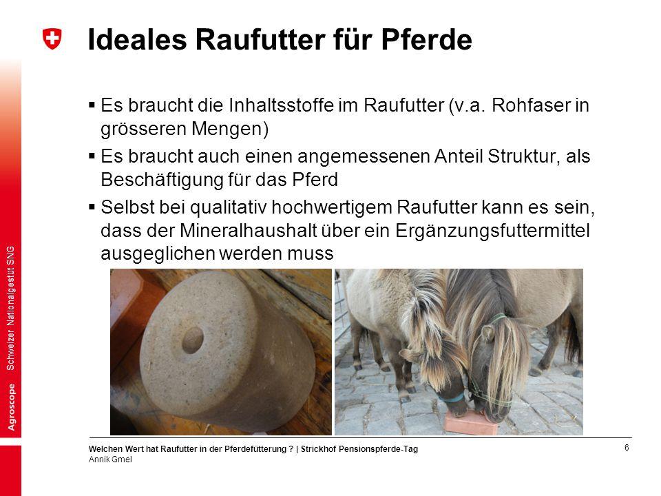 6 Welchen Wert hat Raufutter in der Pferdefütterung ? | Strickhof Pensionspferde-Tag Annik Gmel Schweizer Nationalgestüt SNG Ideales Raufutter für Pfe