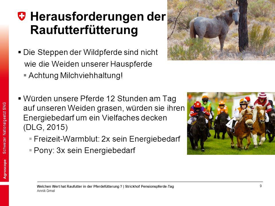 9 Welchen Wert hat Raufutter in der Pferdefütterung ? | Strickhof Pensionspferde-Tag Annik Gmel Schweizer Nationalgestüt SNG Herausforderungen der Rau