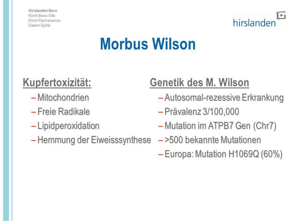 Hirslanden Bern Klinik Beau-Site Klinik Permanence Salem-Spital Kupfertoxizität: –Mitochondrien –Freie Radikale –Lipidperoxidation –Hemmung der Eiweis