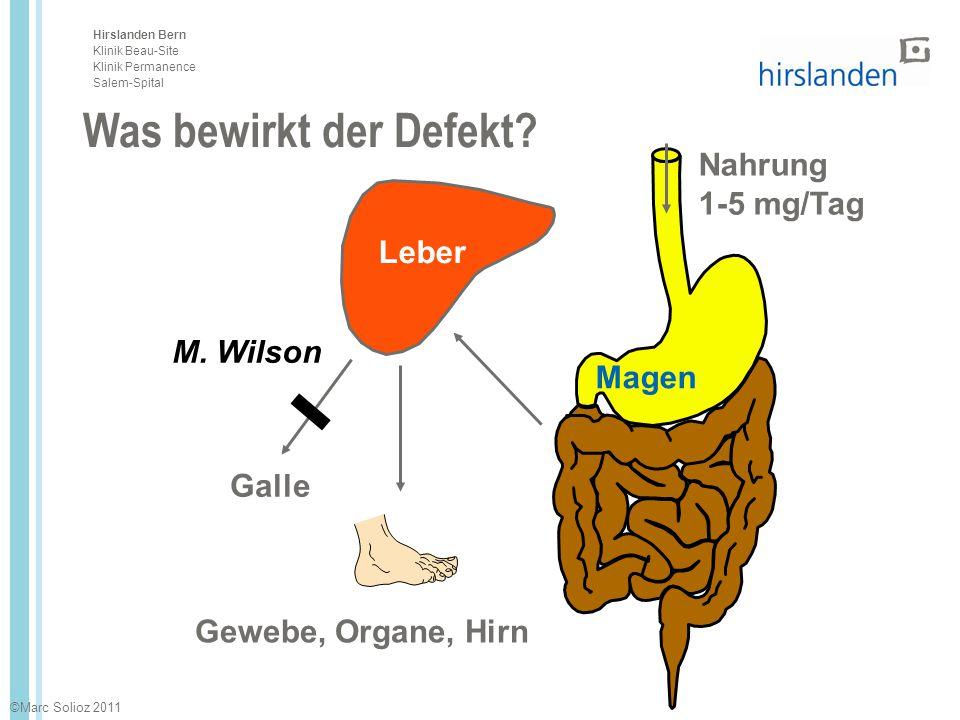 Hirslanden Bern Klinik Beau-Site Klinik Permanence Salem-Spital Nahrung 1-5 mg/Tag Gewebe, Organe, Hirn Leber Magen Galle Was bewirkt der Defekt? M. W