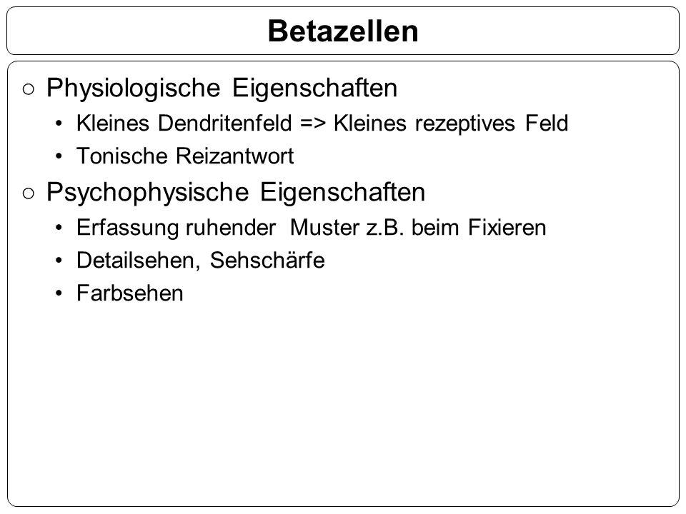 Betazellen ○Physiologische Eigenschaften Kleines Dendritenfeld => Kleines rezeptives Feld Tonische Reizantwort ○Psychophysische Eigenschaften Erfassun