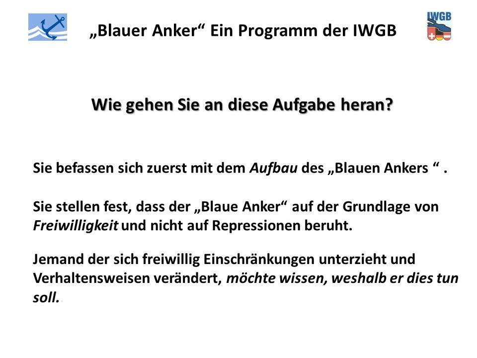 """""""Blauer Anker"""" Ein Programm der IWGB Wie gehen Sie an diese Aufgabe heran? Sie befassen sich zuerst mit dem Aufbau des """"Blauen Ankers """". Sie stellen f"""