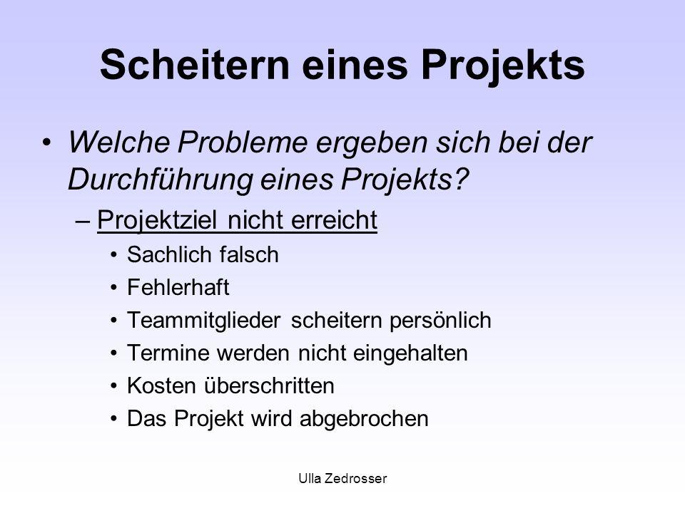 Ulla Zedrosser Scheitern eines Projekts Welche Probleme ergeben sich bei der Durchführung eines Projekts? –Projektziel nicht erreicht Sachlich falsch