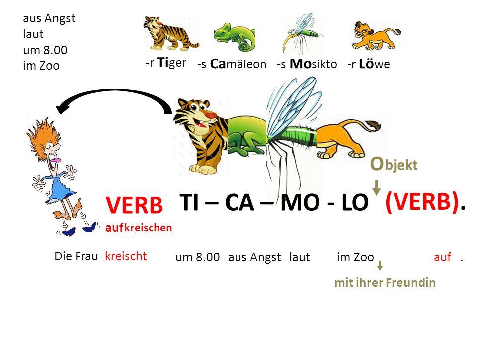 TI – CA – MO - LO VERB auf kreischen (VERB). OO um 8.00 aus Angst laut im Zoo.