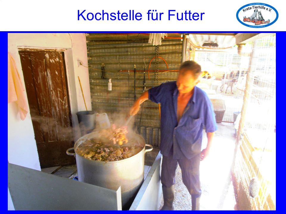 Kochstelle für Futter