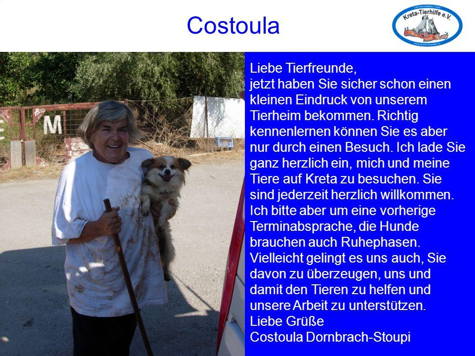 Costoula Liebe Tierfreunde, jetzt haben Sie sicher schon einen kleinen Eindruck von unserem Tierheim bekommen. Richtig kennenlernen können Sie es aber