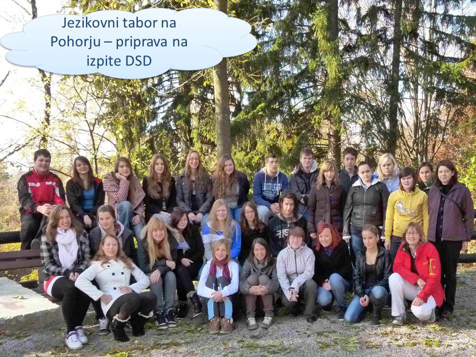 Jezikovni tabor na Pohorju – priprava na izpite DSD