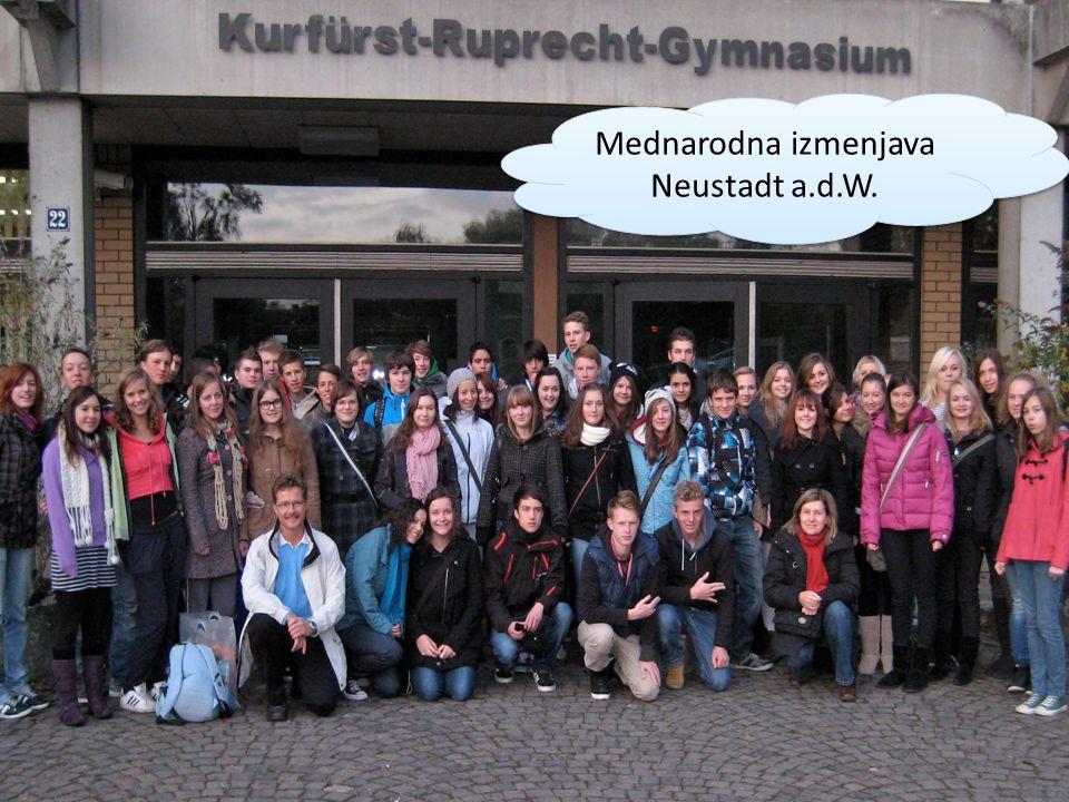 Mednarodna izmenjava Neustadt a.d.W.