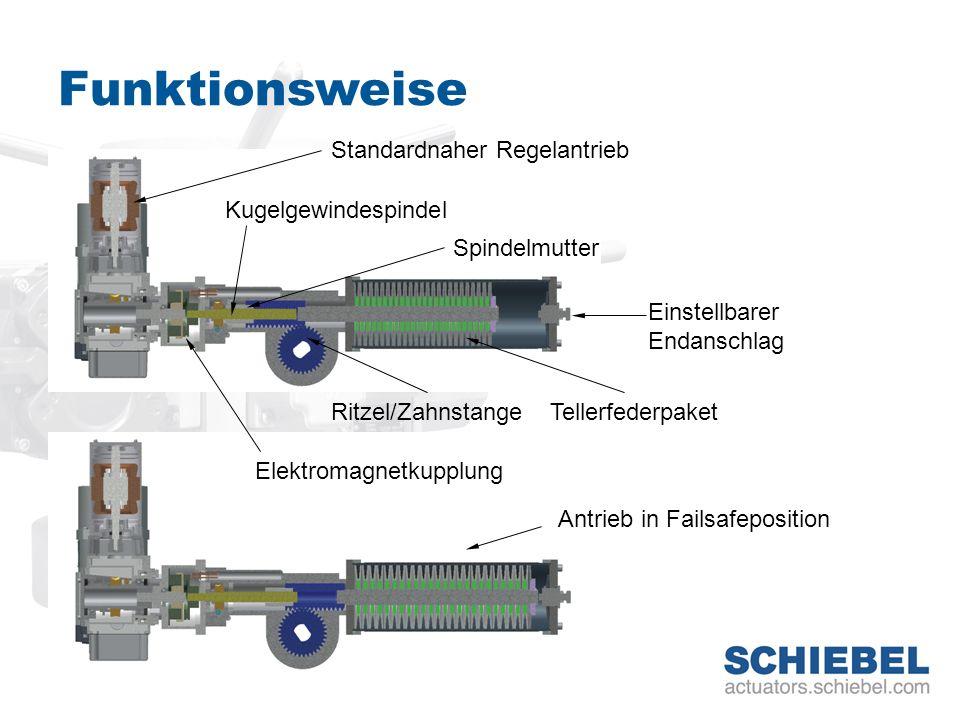 Funktionsweise Standardnaher Regelantrieb Elektromagnetkupplung Kugelgewindespindel Spindelmutter TellerfederpaketRitzel/Zahnstange Einstellbarer Enda