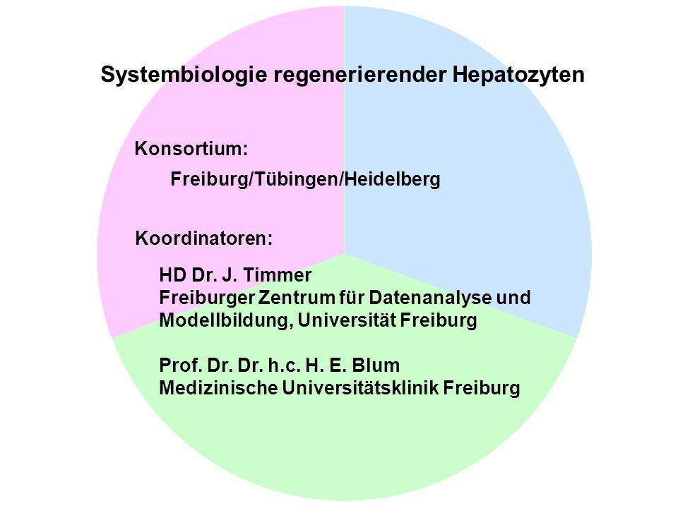 Signalwege 1.Klingmüller 2. Merfort/Sparna 3. Mohr 4.