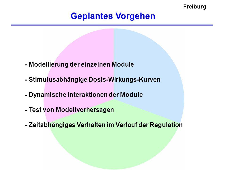 Hypothesen Testen Modell 1Modell 2 P-Rezeptor Signal P-Signal Freiburg