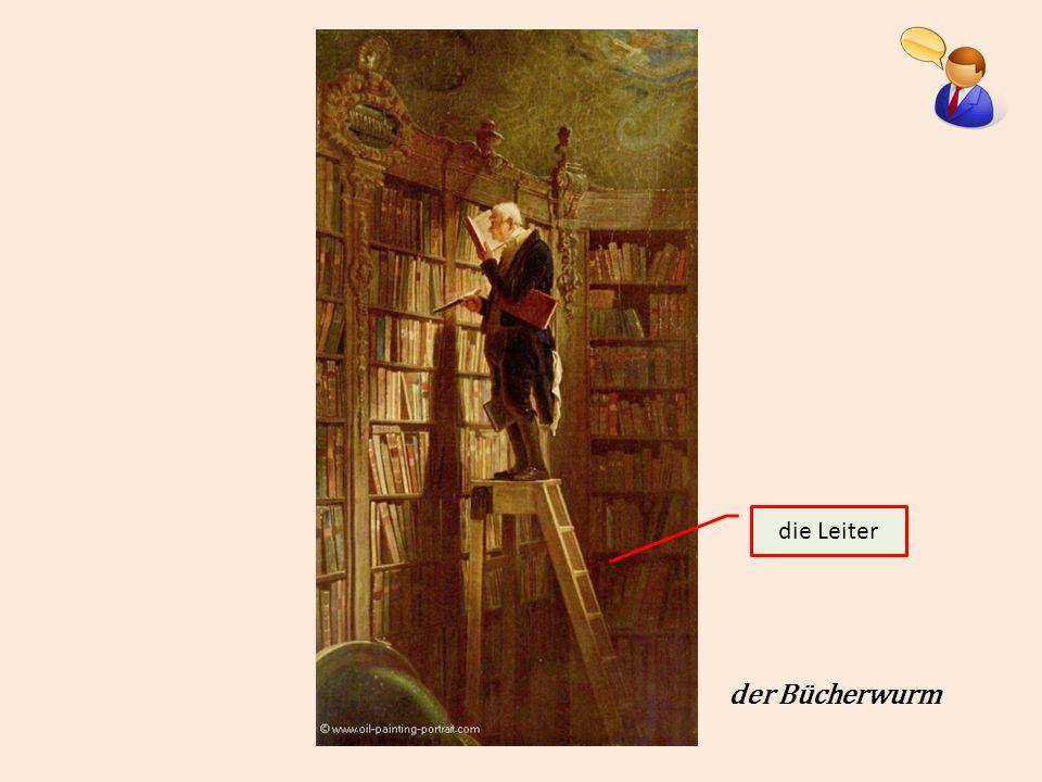 der Bücherwurm die Leiter