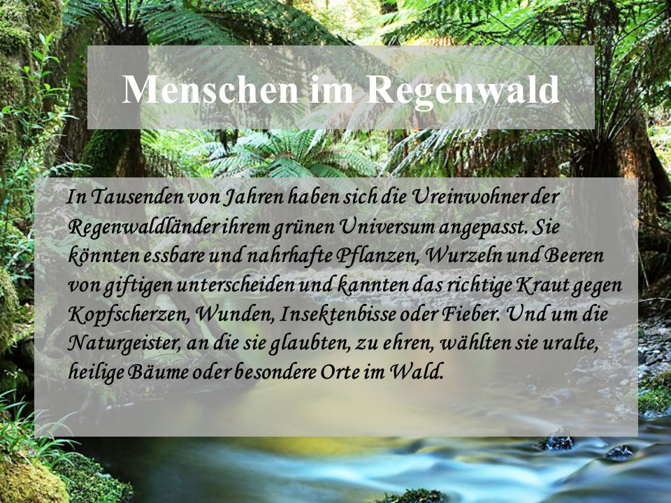 Menschen im Regenwald In Tausenden von Jahren haben sich die Ureinwohner der Regenwaldländer ihrem grünen Universum angepasst. Sie könnten essbare und