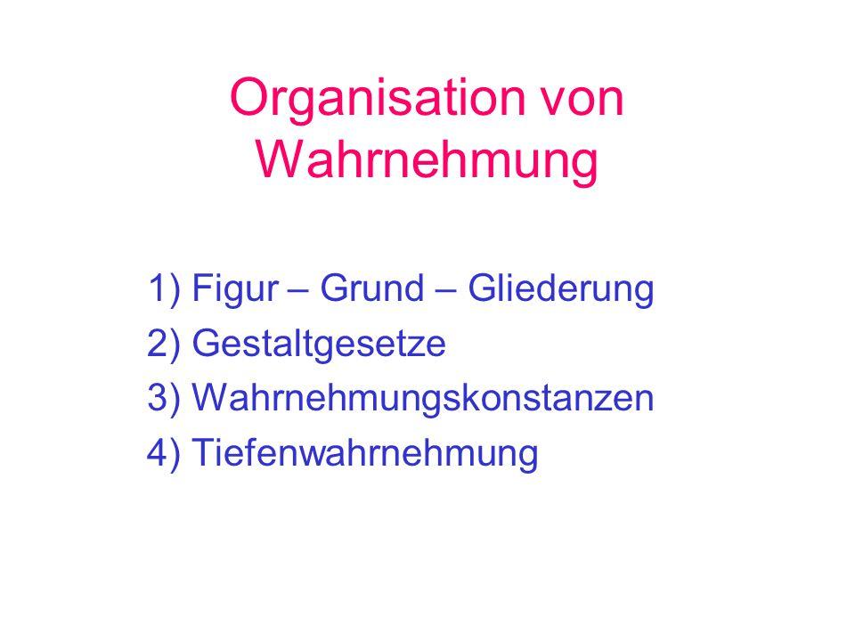 Organisation von Wahrnehmung 1) Figur – Grund – Gliederung 2) Gestaltgesetze 3) Wahrnehmungskonstanzen 4) Tiefenwahrnehmung