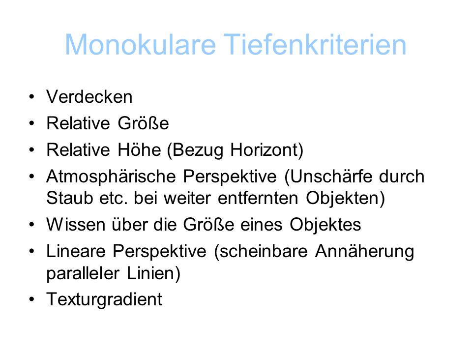 Monokulare Tiefenkriterien Verdecken Relative Größe Relative Höhe (Bezug Horizont) Atmosphärische Perspektive (Unschärfe durch Staub etc.