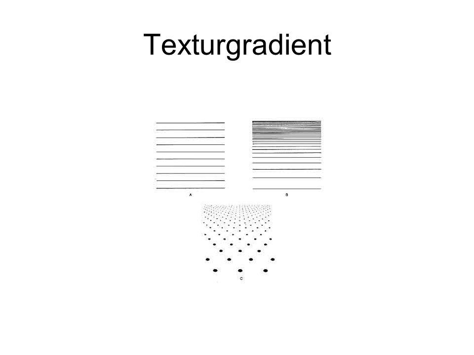 Texturgradient