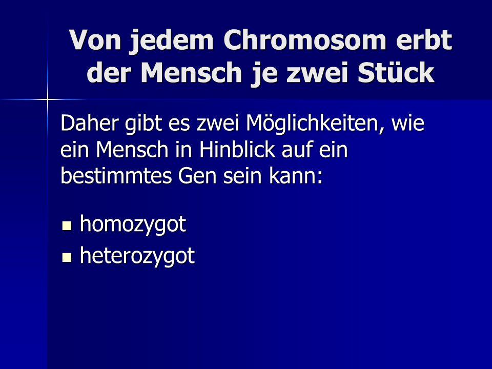 Von jedem Chromosom erbt der Mensch je zwei Stück homozygot homozygot heterozygot heterozygot Daher gibt es zwei Möglichkeiten, wie ein Mensch in Hinblick auf ein bestimmtes Gen sein kann: