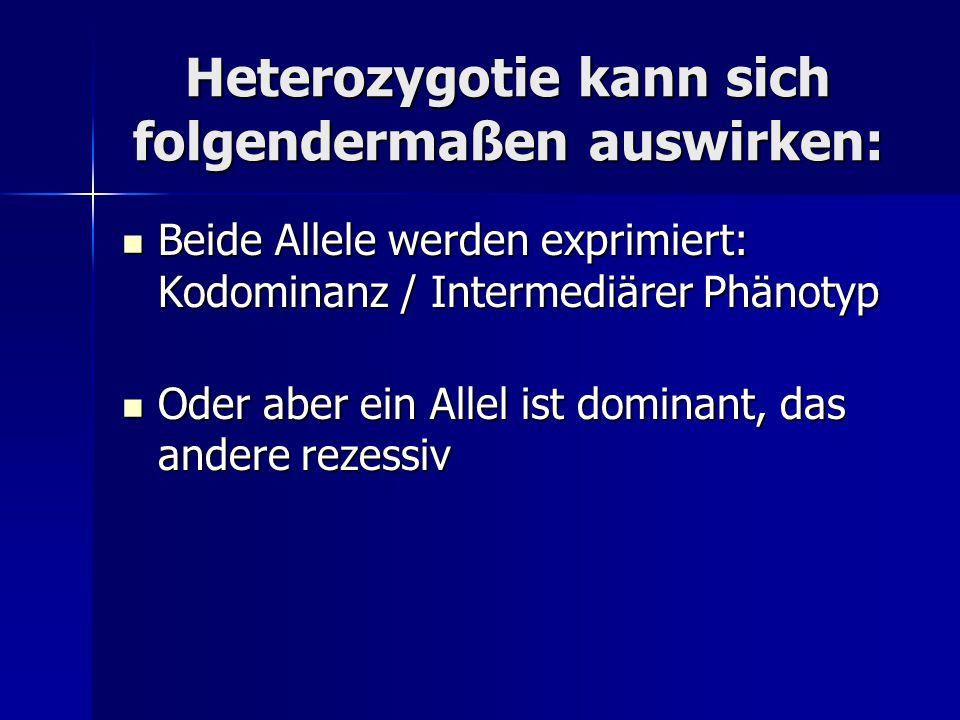 Heterozygotie kann sich folgendermaßen auswirken: Beide Allele werden exprimiert: Kodominanz / Intermediärer Phänotyp Beide Allele werden exprimiert: Kodominanz / Intermediärer Phänotyp Oder aber ein Allel ist dominant, das andere rezessiv Oder aber ein Allel ist dominant, das andere rezessiv