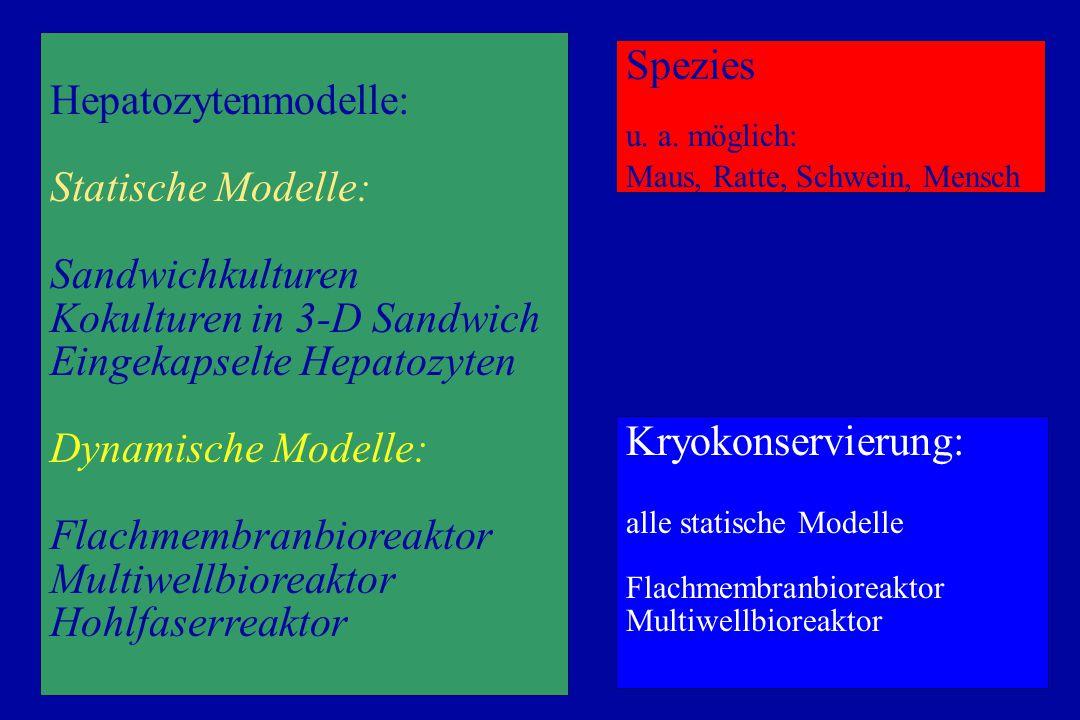 Hepatozytenmodelle: Statische Modelle: Sandwichkulturen Kokulturen in 3-D Sandwich Eingekapselte Hepatozyten Dynamische Modelle: Flachmembranbioreaktor Multiwellbioreaktor Hohlfaserreaktor Möglich und gut praktikabel Spezies u.