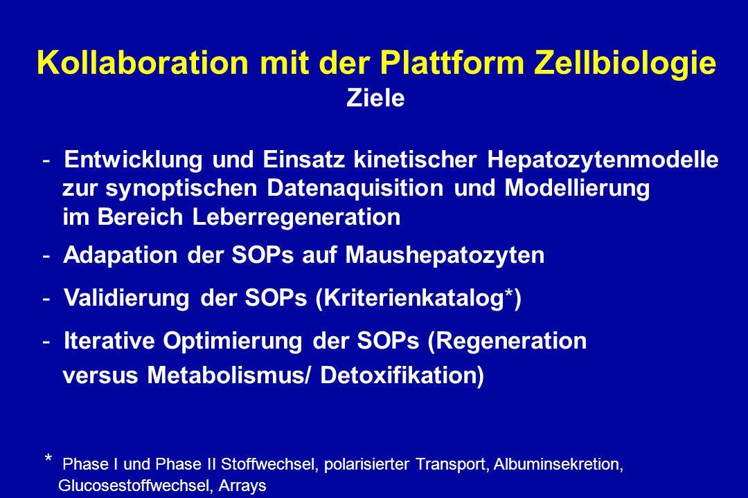 Kollaboration mit der Plattform Zellbiologie Ziele - Entwicklung und Einsatz kinetischer Hepatozytenmodelle zur synoptischen Datenaquisition und Modellierung im Bereich Leberregeneration - Adapation der SOPs auf Maushepatozyten - Validierung der SOPs (Kriterienkatalog*) - Iterative Optimierung der SOPs (Regeneration versus Metabolismus/ Detoxifikation) * Phase I und Phase II Stoffwechsel, polarisierter Transport, Albuminsekretion, Glucosestoffwechsel, Arrays