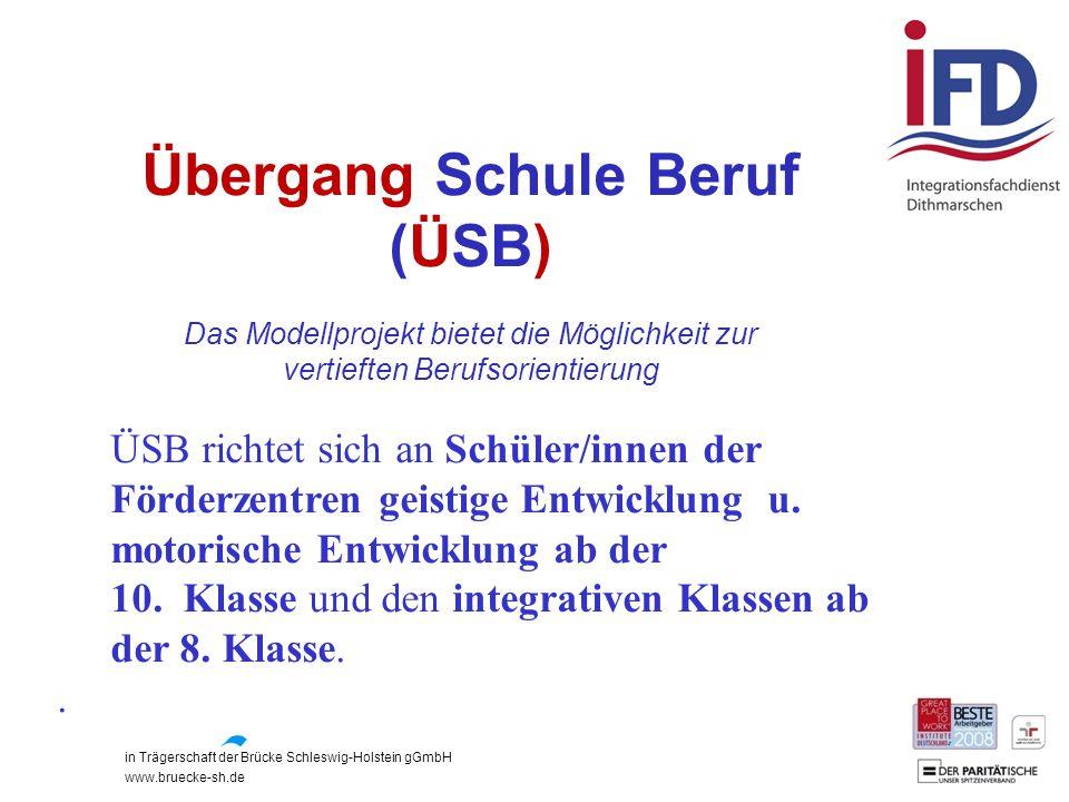 in Trägerschaft der Brücke Schleswig-Holstein gGmbH www.bruecke-sh.de Übergang Schule Beruf (ÜSB) Das Modellprojekt bietet die Möglichkeit zur vertief