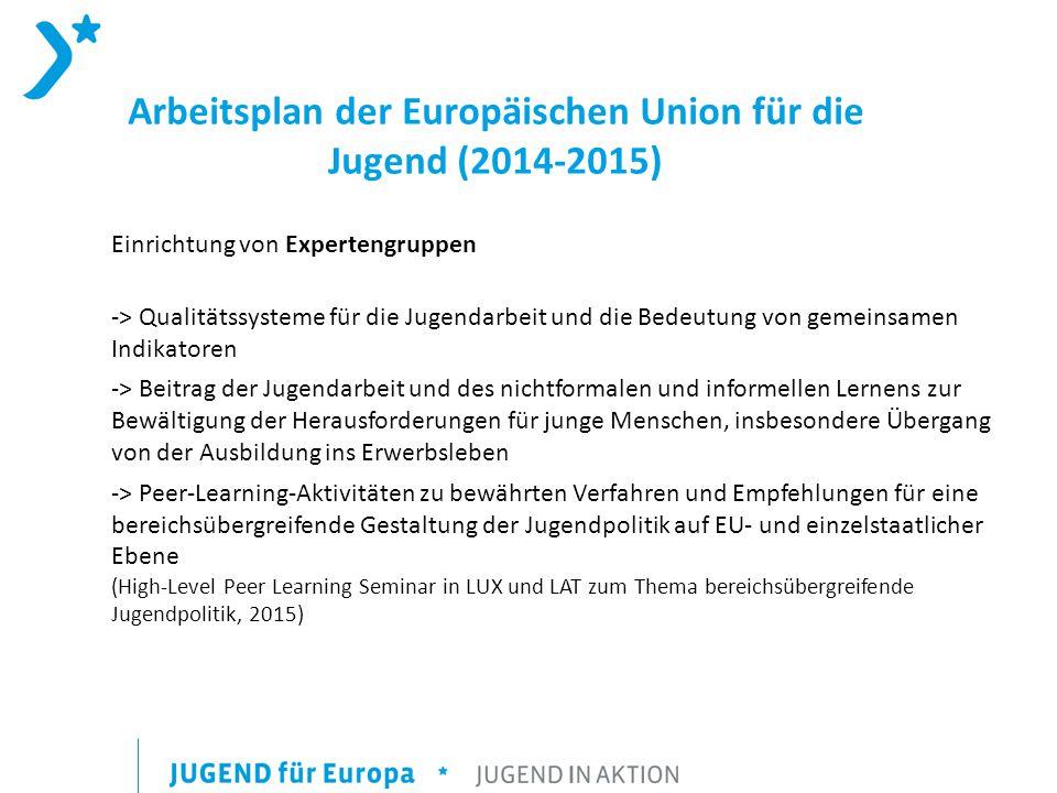Arbeitsplan der Europäischen Union für die Jugend (2014-2015) Einrichtung von Expertengruppen -> Qualitätssysteme für die Jugendarbeit und die Bedeutung von gemeinsamen Indikatoren -> Beitrag der Jugendarbeit und des nichtformalen und informellen Lernens zur Bewältigung der Herausforderungen für junge Menschen, insbesondere Übergang von der Ausbildung ins Erwerbsleben -> Peer-Learning-Aktivitäten zu bewährten Verfahren und Empfehlungen für eine bereichsübergreifende Gestaltung der Jugendpolitik auf EU- und einzelstaatlicher Ebene (High-Level Peer Learning Seminar in LUX und LAT zum Thema bereichsübergreifende Jugendpolitik, 2015)