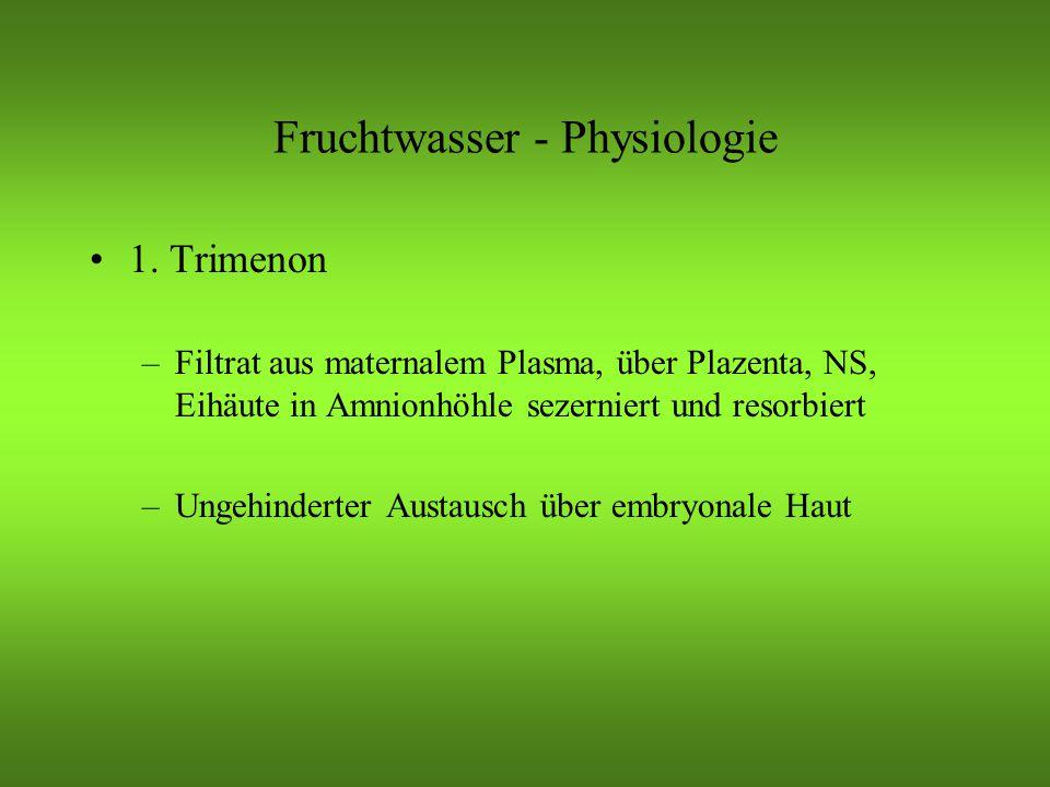 Fruchtwasser - Physiologie 1.