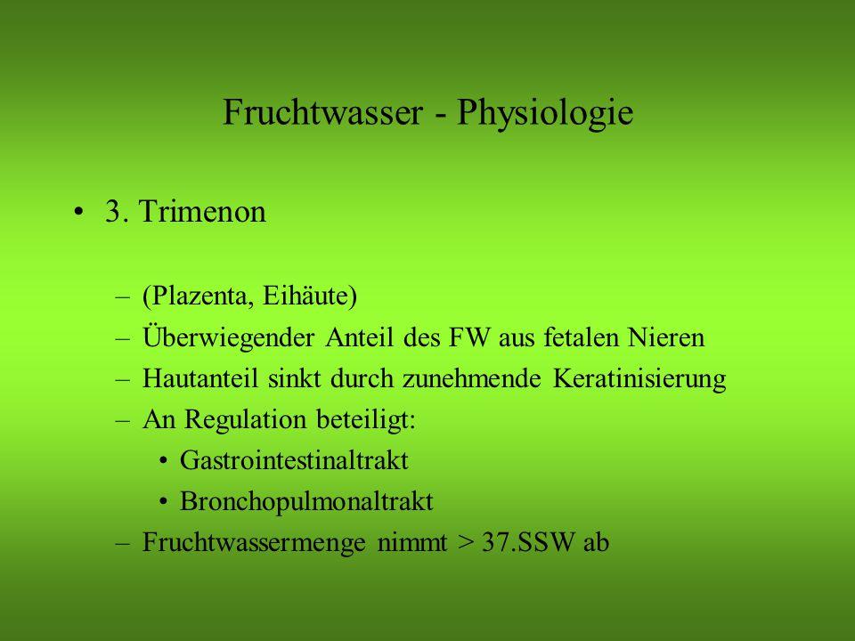 Fruchtwasser - Physiologie 3.