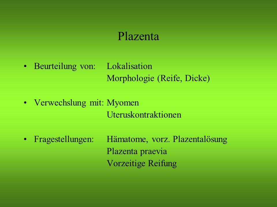 Plazenta Indikationen zur gezielten Beurteilung: –Uterine Blutung –Unklare UB-Schmerzen –Vorzeitige Kontraktionen/Wehen –Diabetes mellitus, Präeklampsie –Mehrlinge –Vd.a.