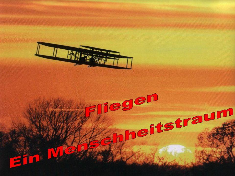 Verschiedene Flugfunktionen Gleitflug Landen und starten Der Vogelflügel