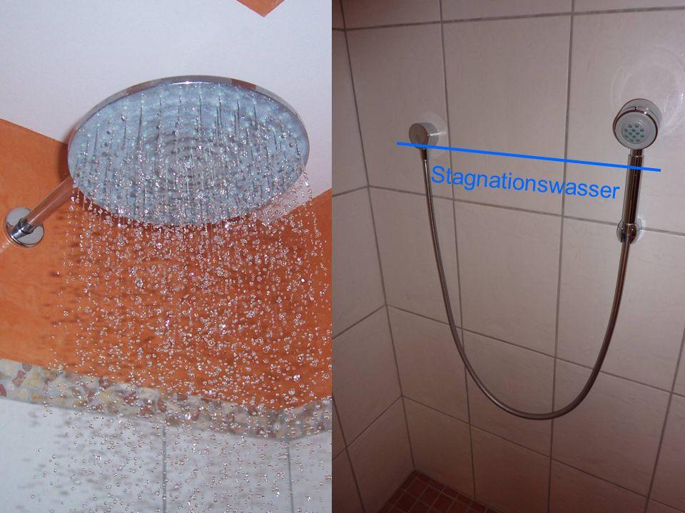 29 Stagnationswasser