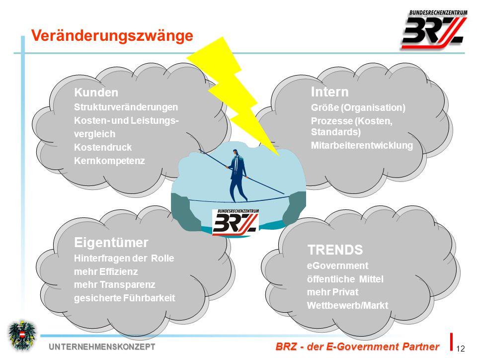12 BRZ - der E-Government Partner UNTERNEHMENSKONZEPT Veränderungszwänge Kunden Strukturveränderungen Kosten- und Leistungs- vergleich Kostendruck Ker