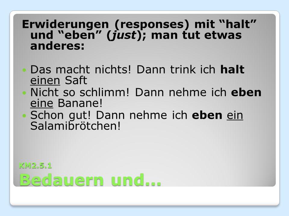 """KM2.5.1 Bedauern und... Erwiderungen (responses) mit """"halt"""" und """"eben"""" (just); man tut etwas anderes: Das macht nichts! Dann trink ich halt einen Saft"""